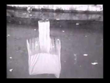 Joan Jonas, Disturbances, 1974