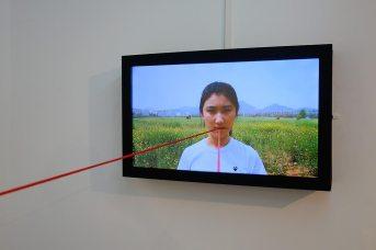 Bertrand Gadenne, La ligne d'horizon (déatil 1) - Gannier Modenne à Art-Cade Galerie Bains Douches, 2017
