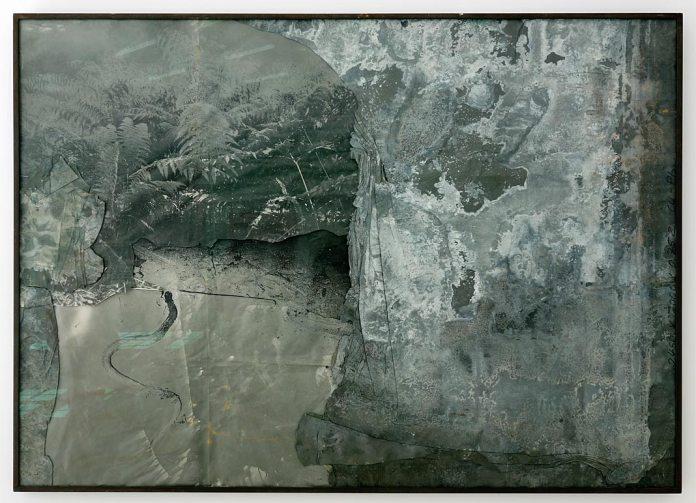 Anselm Kiefer, sans titre, 1998, Photographie et plomb sur toile, Yvon Lambert - La vie secrète des plantes à la Collection Lambert
