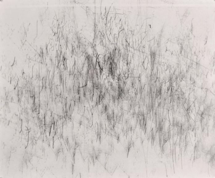 Nina Roussière, Photogramme#02, 2015 argentine sur papier baryté, 50x60 cm. © Nina Roussière