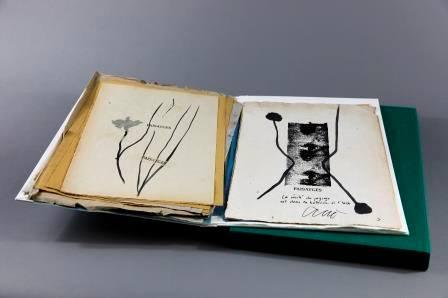 Salah Stétié, Joël Leick, L'Herbier d'octobre (série Païsatges), Collection « Mémoires », impr. 2014