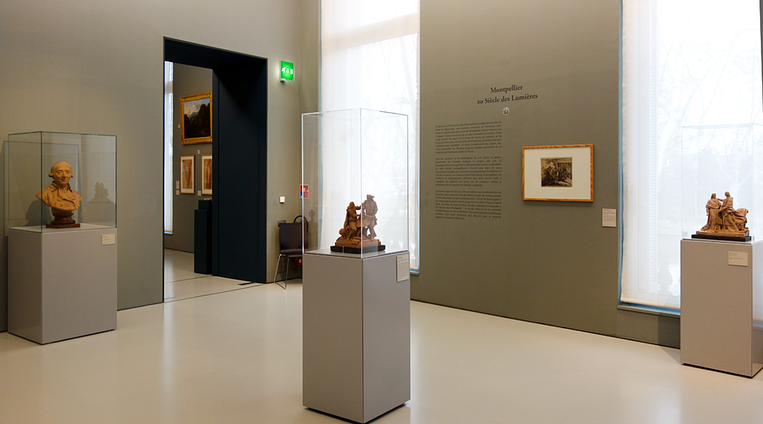 Le Musée avant le Musée au Musée Fabre - Montpellier au Siècle des Lumières