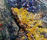 Vik Muniz, Le Semeur, d'après Van Gogh, 8 décembre 2011 (détail) - J'♥ Avignon à la Collection Lambert