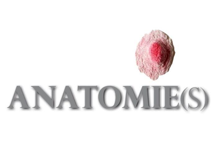 Anatomie(s)- 1 parcours, 3 lieux, 10 artistes à Montpellier