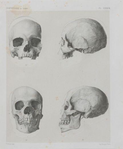Asier Mendizabal, Geodesia y antropometria (crania ethnica), 2016 Collage, 30 x 25 cm Courtesy ProjecteSD, Barcelone Photo R. Ruiz. © A. Mendizabal. Un désir d'archéologie à Carré d'art – Nîmes