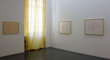 Ligne Forme Couleur - Ellsworth Kelly (1923-2015) dans les collections françaises à la Collection Lambert - Salle 04 -01