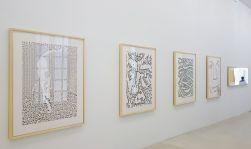 Ligne Forme Couleur - Ellsworth Kelly (1923-2015) dans les collections françaises à la Collection Lambert - Salle 10