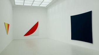 Ligne Forme Couleur - Ellsworth Kelly (1923-2015) dans les collections françaises à la Collection Lambert - Salle 11