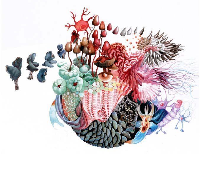 Abigaïl Frantz, Cosmogonies cannibales, 2017-2018 dessin (crayon, encres, feutres), 100 × 70 cm.