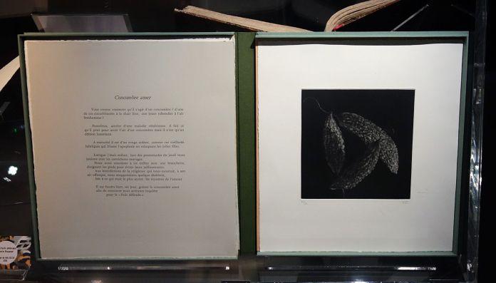 Les fruits défendus, Marie Rouanet - Exposition Verdigris- le noir en filigrane au musée Médard Lunel