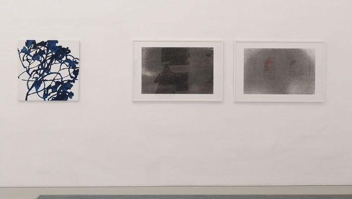 Alexandre Hollan -L'invisible est le visible au Musée Fabre - Salle 3 - Dans le motif