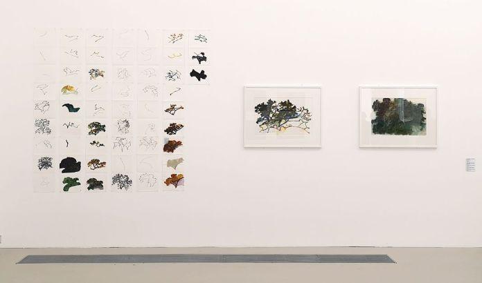 Alexandre Hollan -L'invisible est le visible au Musée Fabre - Salle 4 - Le motif des couleurs