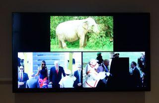 Alexander Kluge, Le cirque arrive en ville (2018) et Triptyque policier (2017) - James Ensor et Alexander Kluge - Siècles noirs à la Fondation Van Gogh Arles
