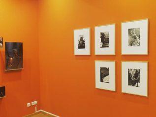 Pierre Toussaint Série Métronomes, 2009-2011 - À première vue - Maupetit, côté galerie Photo © Journal Ventilo