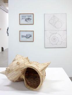 Teruhisa Suzuki - Coquillage M, 2018 et Ensemble de travaux sur papier - Biomorphisme à La Friche de la Belle de Mai