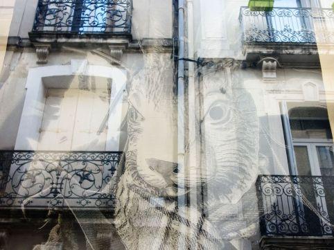Denis Brun à Montpellier