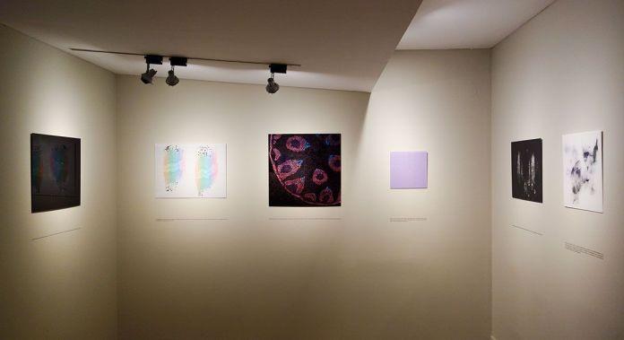 Olivier Gschwend, Serendipity - Les Boutographies 2019 - Vue de l'exposition