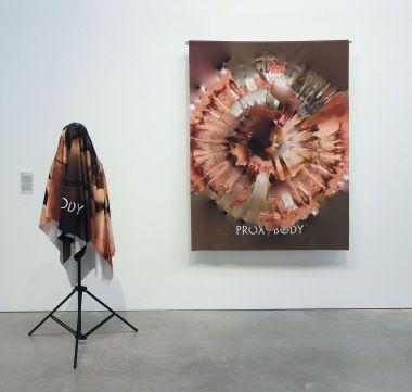 SCN, Proxybody, 2015-2017 - A School of Schools – Luma Arles - Vue de l'exposition - Photo En revenant de l'expo !