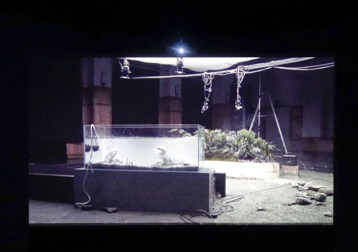 Maya Watanabe - Earthquakes, 2017 - Sur Terre - Image, technologies & monde naturel - Rencontres Arles 2019