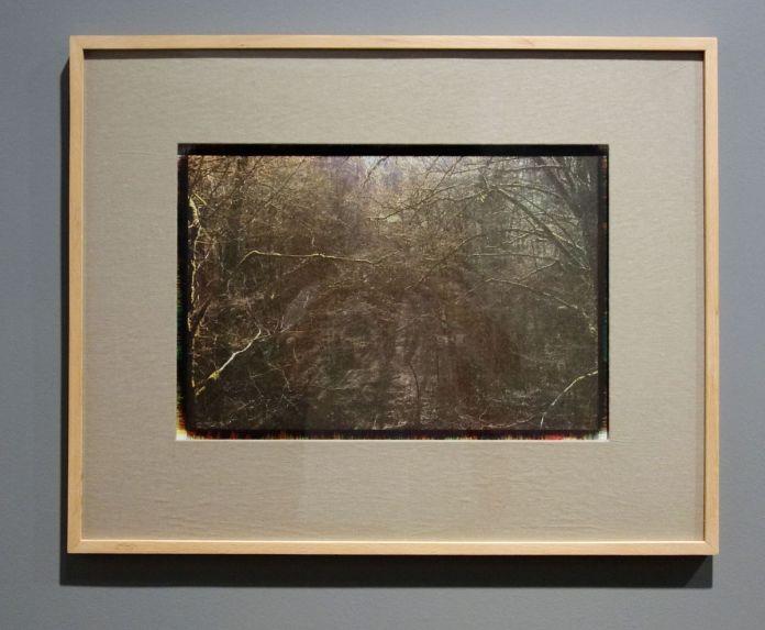Mehrali Razaghmanesh - Sans titre - Sur Terre - Image, technologies & monde naturel - Rencontres Arles 2019