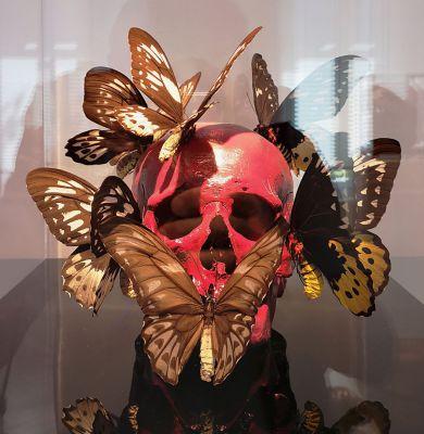 Philippe Pasqua - Crâne-Papillons, 2008 - Bêtes de scène à la Villa Datris - Cabinets de curiosité