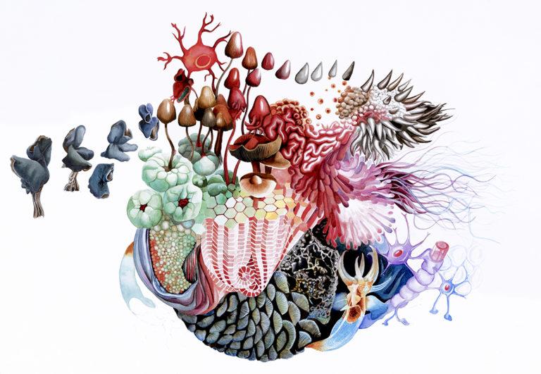Abigail Frantz Cosmogonies cannibales, 2017-2018 Crayon, encres, feutres sur papier aquarelle, 100 × 70 cm © photo Clément Gérardin