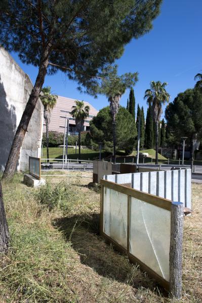 Wilfrid Almendra - 100 artistes dans la ville à Montpellier - Photo Marc Domage