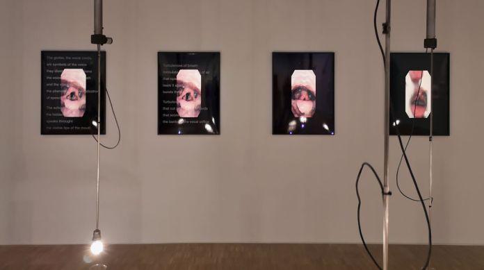 VALIE EXPORT - Turbulences of Breath, 2007- Expanded Arts au Pavillon Populaire Montpellier
