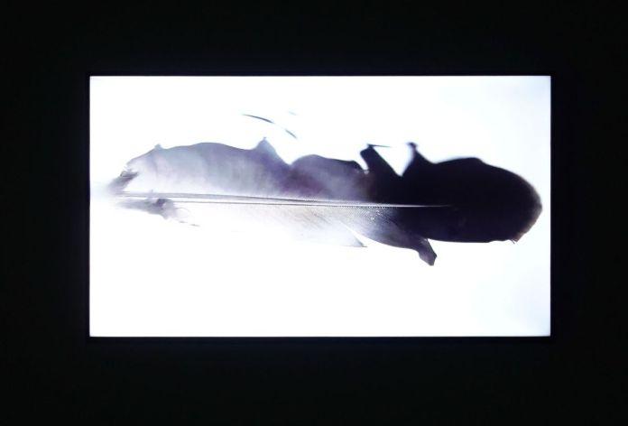 Fabrice Pichat - Synchronie, 2018 - Les Instants Vidéo à la Friche
