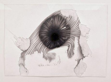 Dominique Figarella - âche, 2016 crayon sur papier, 34,5 x 43,5 cm