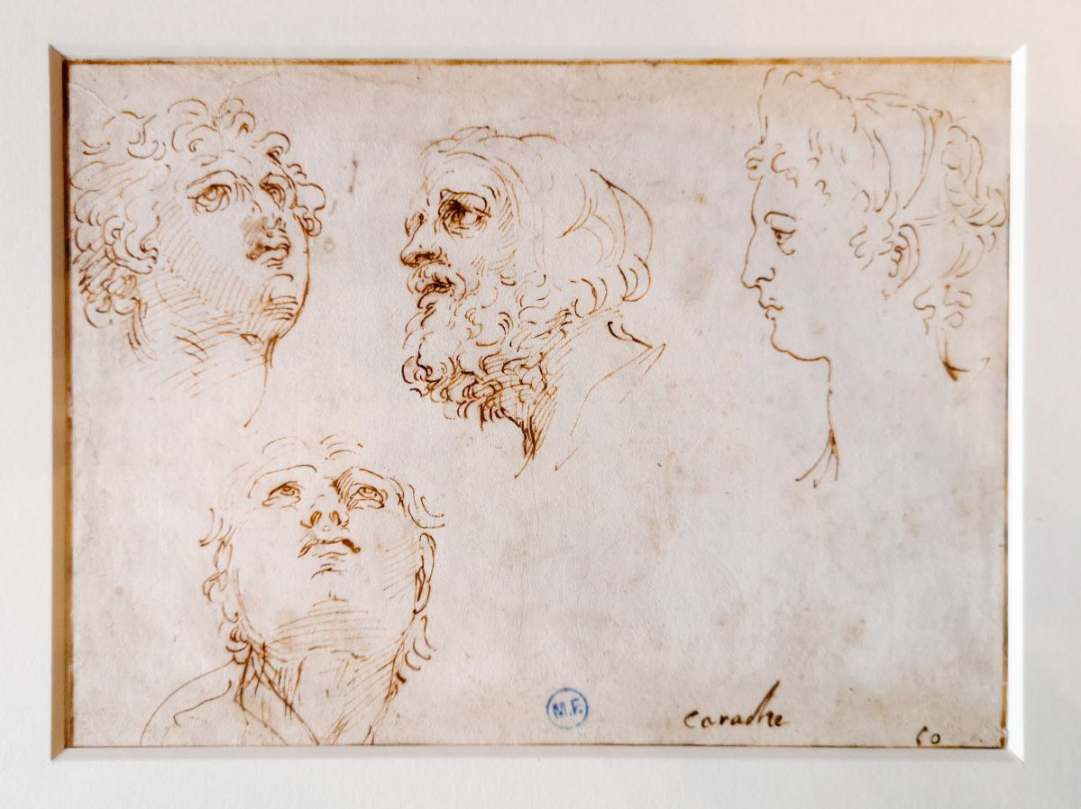 Atelier d'Agostino Carracci - Quatre études de têtes - Art & Anatomie - Musée Atger