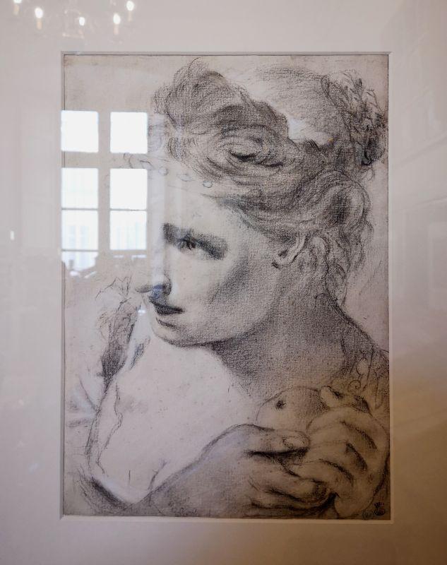Entourage de Giovanni Battista Piazzetta, Tête de jeune femme, XVIIIe siècle - Art & Anatomie - Musée Atger