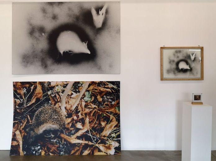 Julien Blaine - Hérisson, Vertigo Signi 1992 galerie Roger Pailhas, Paris - Le Grand Dépotoir à la Friche Le Belle de Mai