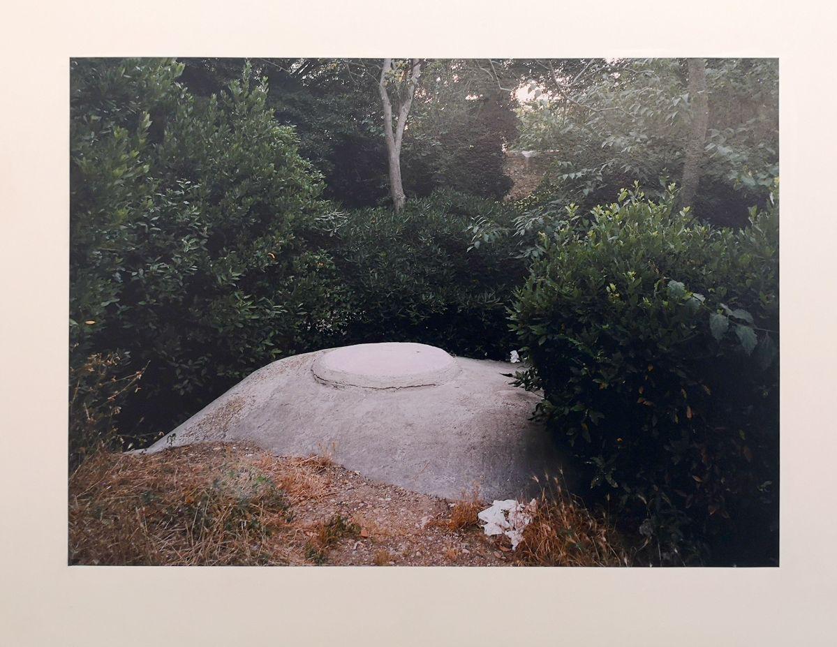 Margret Hoppe - Parc Borély - 43°15'29''N 5°22'53,3''E - Südwall (Le mur de la Méditerranée) - Friche la Belle de Mai
