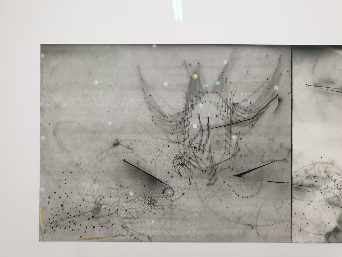 Nina Roussière - Photogrammes argentiques, rehauts dorés, 45 x 145 cm, 2020