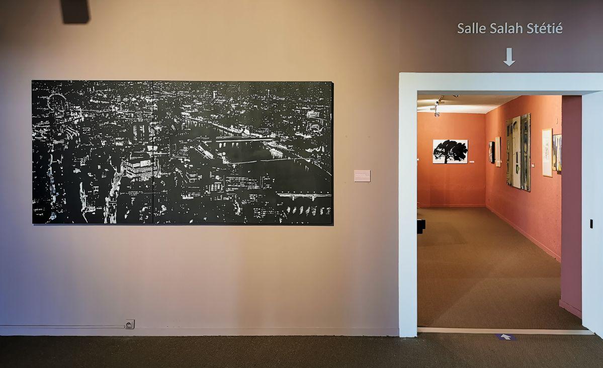 Patrice Palacio - Œuvres récentes au Musée Paul Valéry à Sète