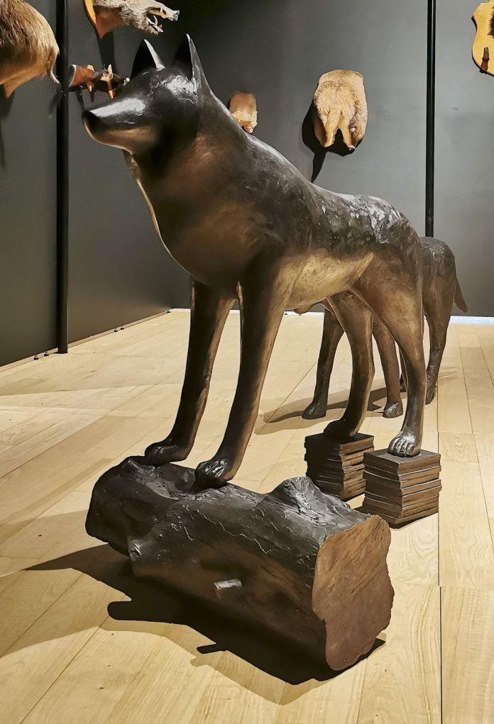 Roland Cognet - Grand loup, Louve marchant et Louveteau - Sauvages- Maison Rouge - Musée des vallées cévenoles à St Jean du Gard