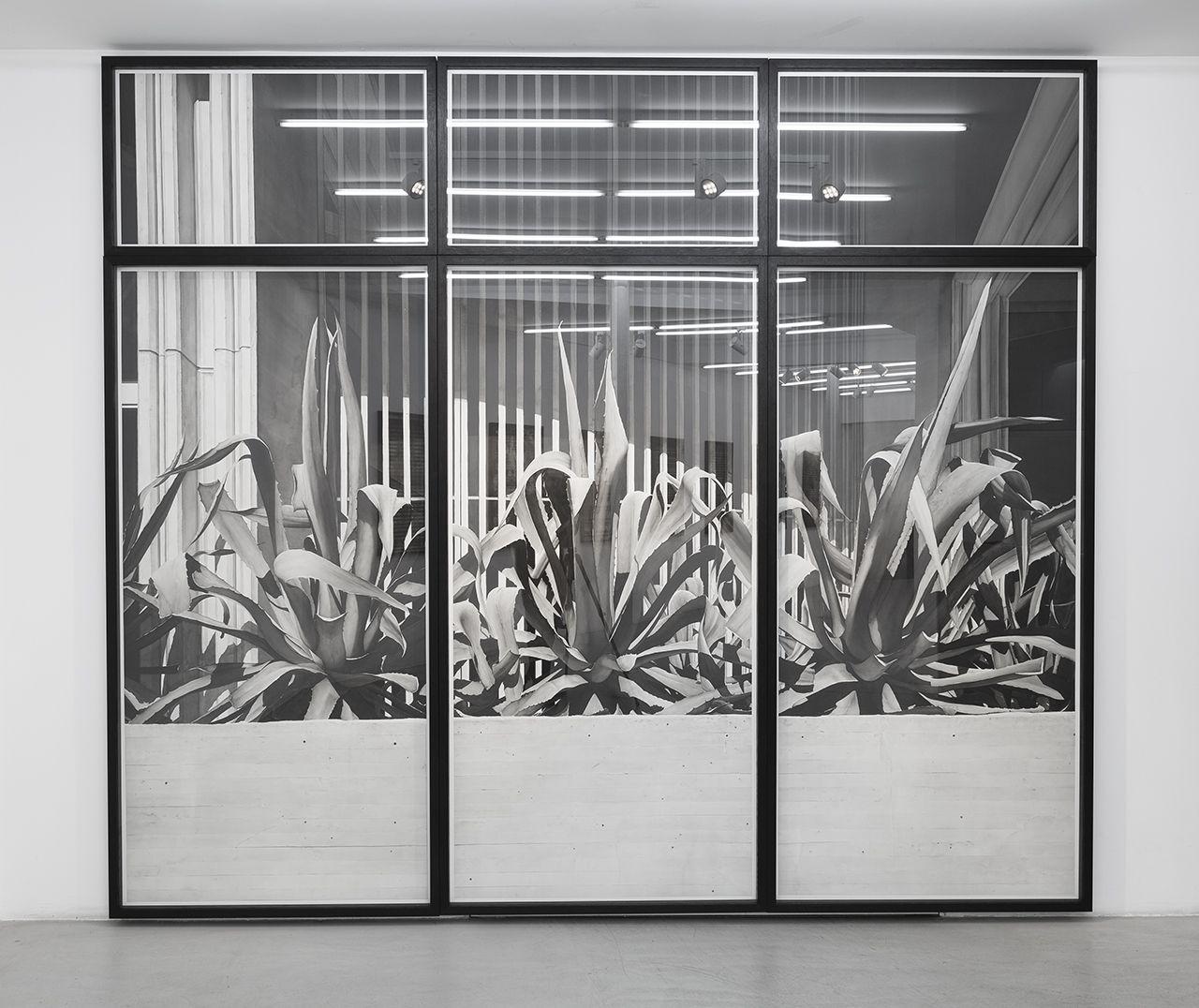 Justin Wieler, Madrid, 310×360, credit Théo Baulig, 2020