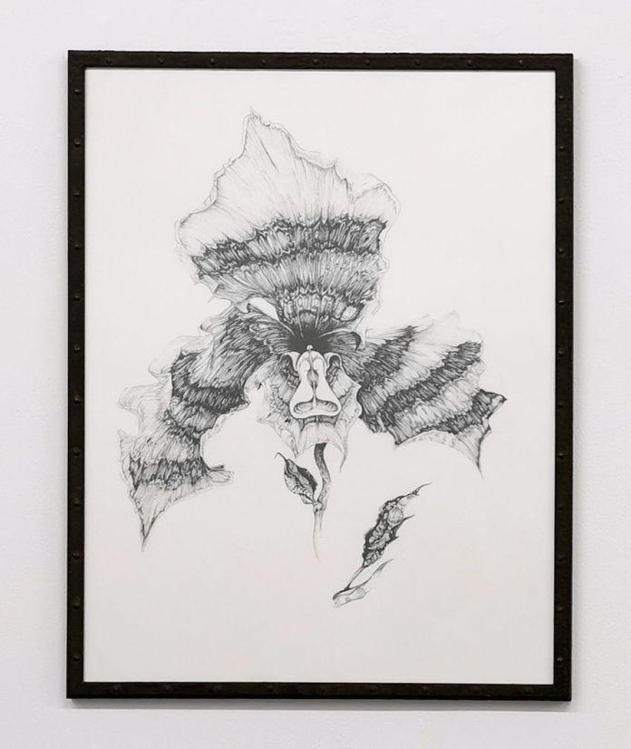 Nicolas Aguirre - Orchidée, 2020 - Mind the gap à la galerie chantiersBoîteNoire
