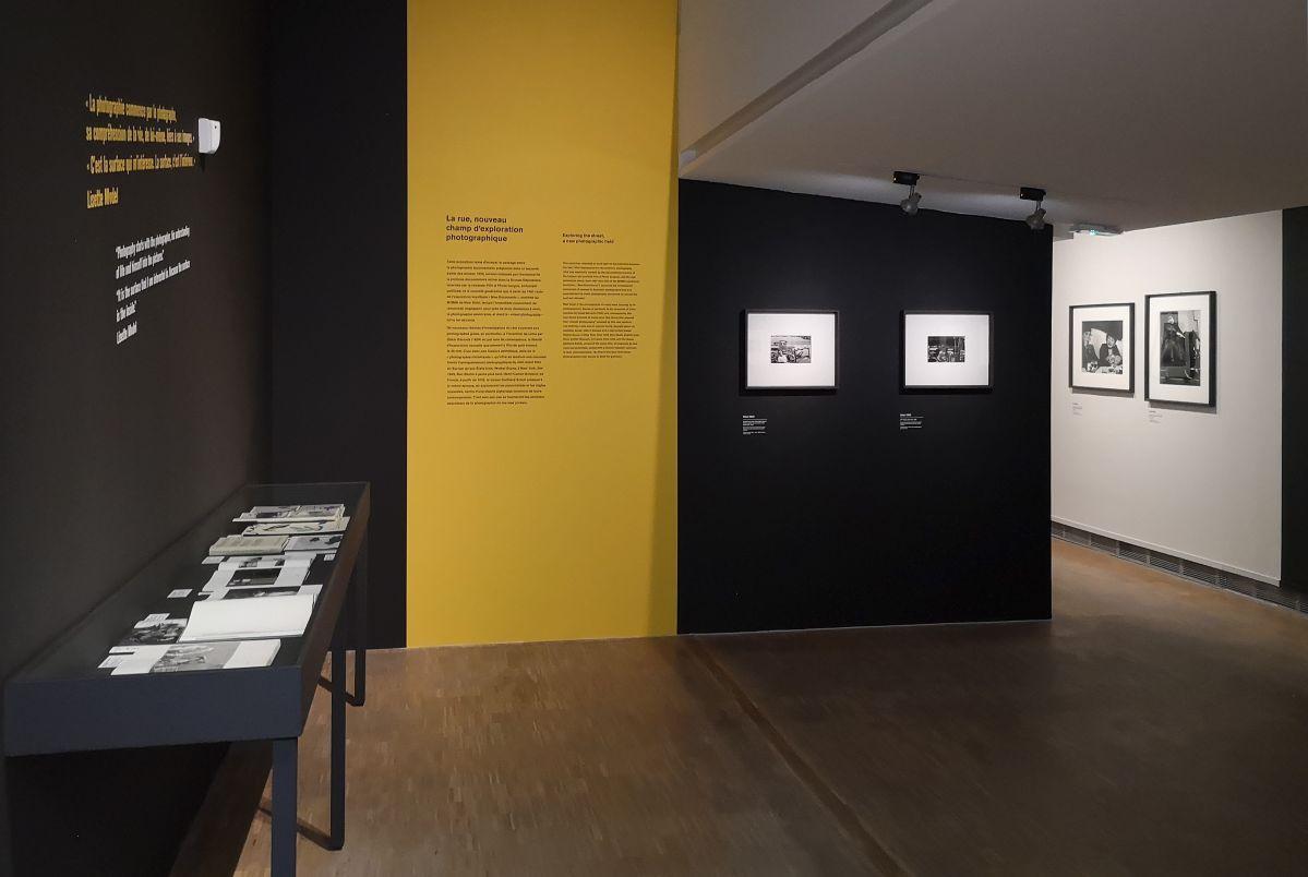 The New York School Show au Pavillon opulaire de Montpellier - Introduction