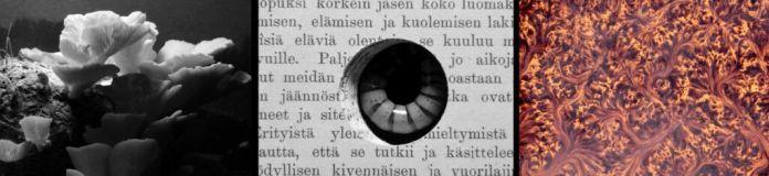 Saara Ekström & Eero Tammi - Biblion, 2019 - Finlande - Les Instants Vidéo 2020 - «Mort, la vie te guette !»