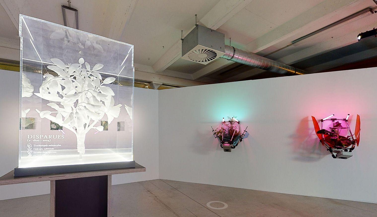 Donatien Aubert - Les jardins cybernétiques, 2020 - Biennale Chroniques 2020 - Éternité part 2 - Friche la Belle de Mai