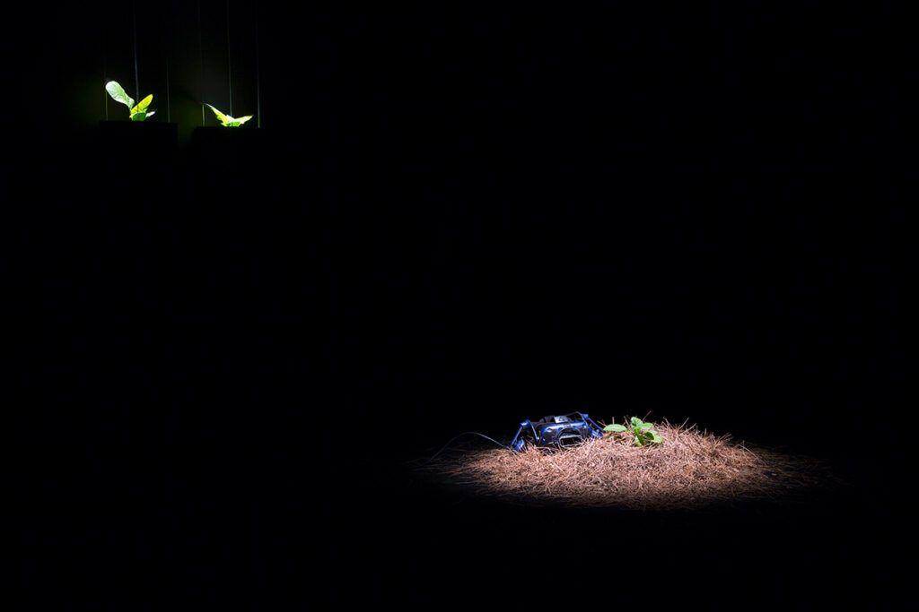 Élise Morin - Spring Odyssey, 2019 - Biennale Chroniques 2020 - Éternité part 2 - Friche la Belle de Mai © Pierre Gondard