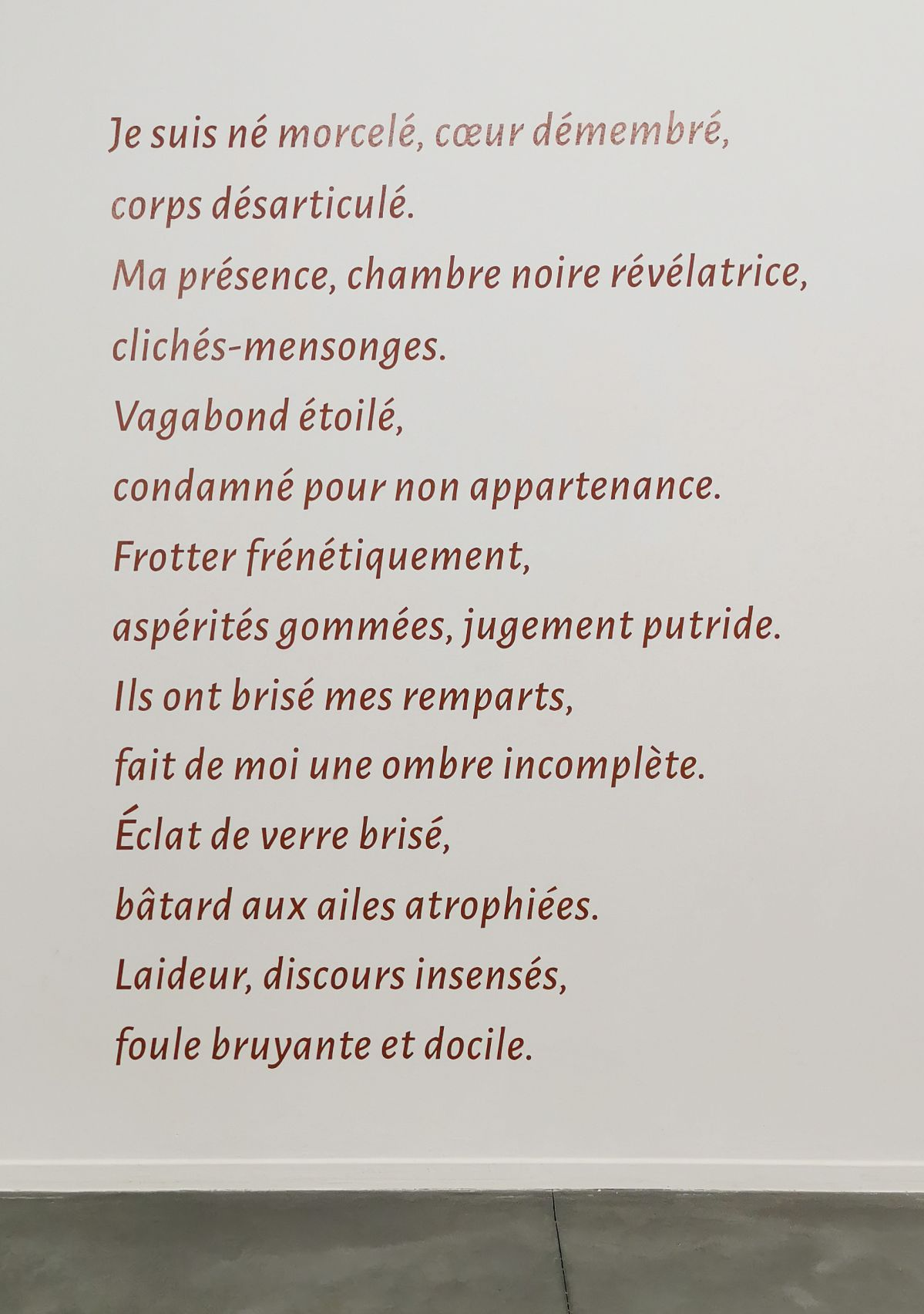 Hicham Ayouch - Peau aime, 2020 - Avenir commun- Les chemins des indésirables - «Distance ardente» au MRAC à Sérignan