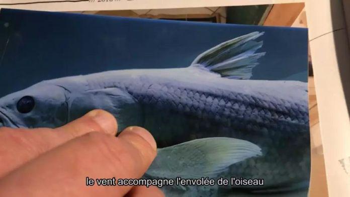 Arnaud Théval et Pauline Boyer - L'animal me garde, 2021 - «Ensembles» au Centre Photographique Marseille