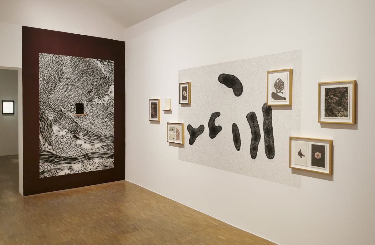 Lucia Peluffo – « Une tentative d'équilibre » - Selection des Boutographies2021 - Montpellier
