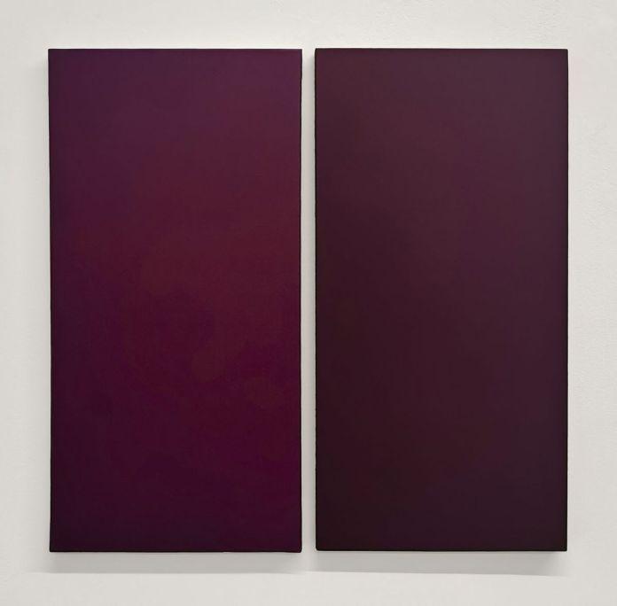 Pascal Ravel - Diptyque N°1, 2017-2019 - Aquaplaning - Carte Blanche à Nicolas Daubanes à la Galerie ALMA