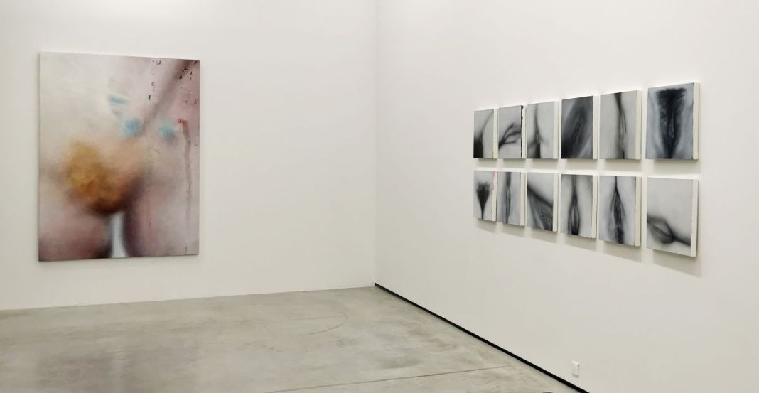Marilyn Minter - All Wet et Betty Tompkins - Raw Material au MOCO Panacée