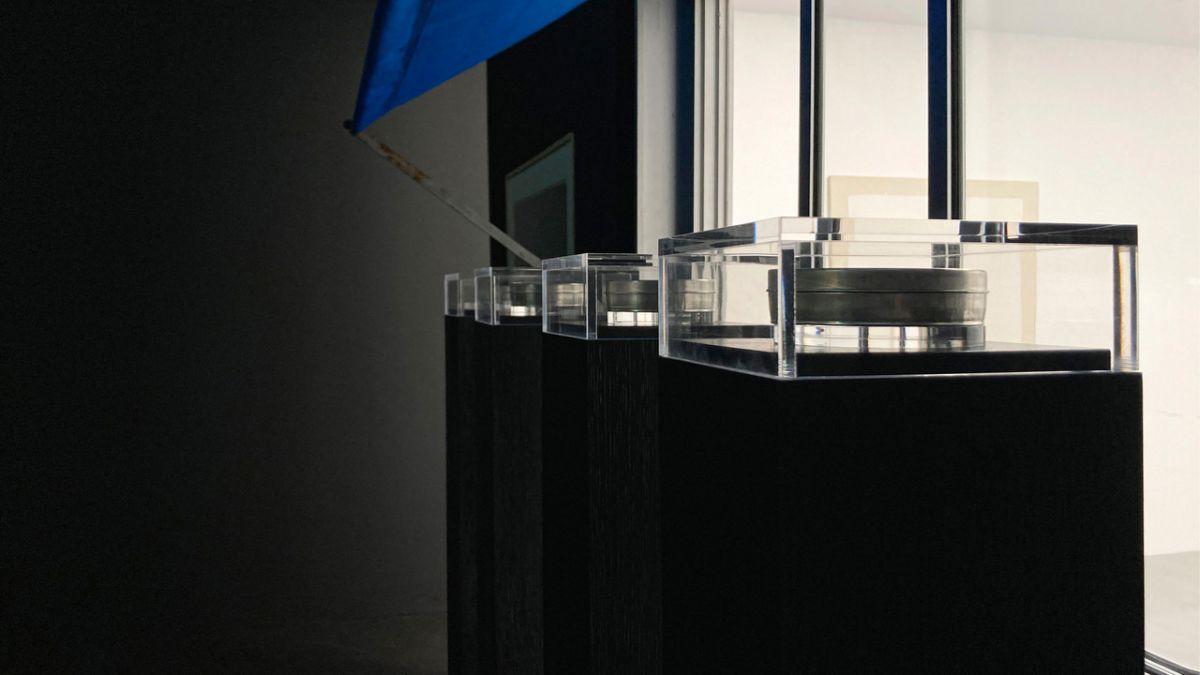Loris Gréaud, Sculpt, 2015 - Vue de l'exposition Brocoli - Loris Gréaud + Yvon Lambert © Loris Gréaud, Gréaudstudio Photo Realism Noir