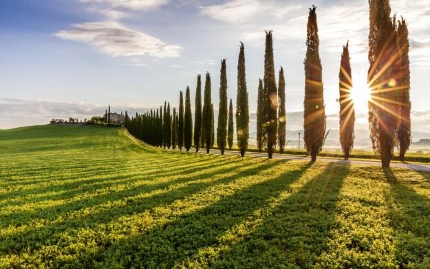 Tuscany Siena